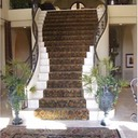 imported-india-wool-carpet-stairs